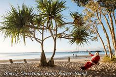 Holiday on a World Heritage Listed Fraser Island at Kingfisher Bay Resort. Fraser Island, Creature Comforts, Kingfisher, Tour Guide, Wilderness, Fresh Water, Cruise, Merry Christmas, Tours