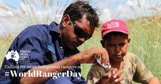 Journée mondiale Ranger 2016