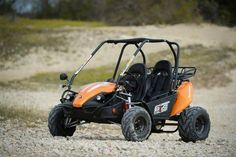 Hammerhead 150GTS Platinum 'Special Edition' Buggy