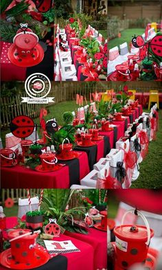 ladybug party ideas for kids | 4aKid fan makes a stunning ladybug party!