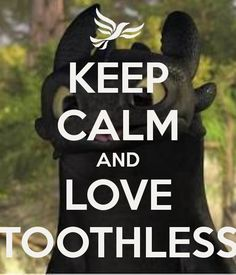 KEEP CALM AND LOVE TOOTHLESS. Another original poster design created with the Keep Calm-o-matic. Buy this design or create your own original Keep Calm design now. Toothless And Stitch, Toothless Dragon, Hiccup And Toothless, Cute Toothless, Baymax, Dreamworks Dragons, Disney And Dreamworks, Httyd Dragons, How To Train Dragon