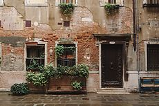 Old weathered building with plants growing on facade. Venice, Italy. Architecture gallery by Trent Lanz for Stocksy United - Royalty-Free Stock Photos. architecture, background, brick, brickwall, building, cement, city, concrete, day, daylight, decor, door, europe, european, exterior, facade, green, historic, horizontal, house, italian, italy, nobody, old, outdoors, plant, plaster, shabby, shutter, stocksy, street, stucco, venice, venitian, view, weathered, windows
