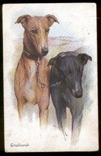 Postcard - A. Vivian Mansell & Co.