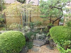Bamboo Fence, My Works, My Design, Construction, Patio, Garden, Outdoor Decor, Plants, Home Decor