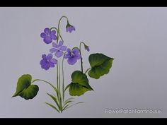 Learn how to paint violets one stroke at a time. I share 3 ways to paint these daintly little flowers. Paint them on cards, gifts, canvas paintings or hand painted signs. This easy and fun painting tutorial will have you painting violets in no time. Beginning Watercolor, Easy Watercolor, Watercolor Flowers, Watercolor Paintings, Canvas Paintings, Watercolors, Painting Flowers, Face Paintings, Watercolour Tutorials