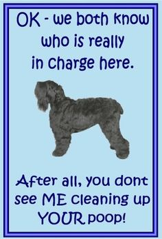 Black Russian Terrier owners - just for you - one of over 200 breeds in our ebay store.