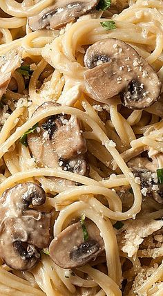 ❊Creamy Chicken and Mushroom Spaghetti