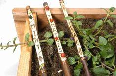 branchettes avec les noms de légumes pour potager