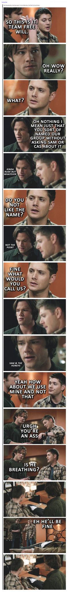 """""""Sam and the Honey's""""- His FACE!! """"How bout we use mine, and not that."""""""