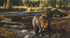 guy coheleach paintings - Cerca con Google
