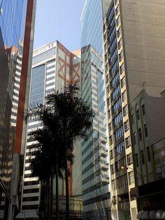 Building prédio, ligth, luz, arte, tree, árvore, espelho, mirror, reflexo. Foto, fotograph, Praça  Mauá RJ - Rio de Janeiro.