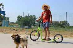 Kostka kolobežky DogFest 2015 Bicycle, Sports, Outdoor, Hs Sports, Outdoors, Bike, Bicycle Kick, Bicycles, Outdoor Games