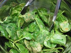 Raw Spinach Chips | Mama in the Kitchen