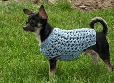 CROCHETED CHIHUAHUA SWEATER PATTERNS - Crochet Club
