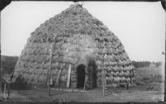 Grass house of the Wichita Indians near Anadarko, Oklahoma, is cone shape with a thatch of long grass laid in tiers that overlap like shingles. The Wichita have been identified historically with Quivirans that the Coronado expedition encountered in south-central Kansas in 1541. The group moved south into what is now Oklahoma early in the eighteenth century where they are located today. Photo taken between 1890 and 1899.