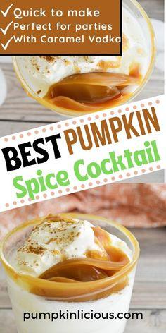 Pumpkin Spice Cocktail With Vodka #pumpkincocktails Pumpkin Cocktail, Pumpkin Drinks, Pumpkin Dip, Pumpkin Spice Coffee, Spiced Coffee, Best Pumpkin, Pumpkin Recipes, Pumpkin Growing, Caramel Vodka