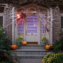 When it comes time to decorate for Halloween, not everyone goes for the gore. This bewitching Halloween entryway can be found in the historical Park Slope neighborhood of Brooklyn, New York. Enchanting colors -- orange, lime green, soft purple, yellow and red -- and clever lighting make this house a real head-turner.