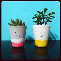 Companheiros fofos pra sua mesinha🌵❤  .  #concreto #concrete #feltro #suculentas #plantas #laschicas #laschicastienda #bauru #laschicasatelie #baurucity #brasil #estadodesaopaulo #suculentslover #suculent #plants #cimento #argamassa