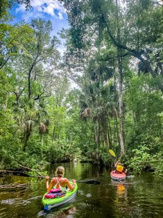 Kayaking down the Wacissa River in Northern Florida is awesome. We also did an airboat ride here. Check this place out for cool things to do in Florida on your next Florida vacation! #Kayaking #Florida #travel #familytravel #Floridatravel Florida Vacation, Florida Travel, Airboat Rides, Stuff To Do, Things To Do, Kayak Adventures, Kayaking, Family Travel, Places To Go