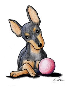 Min Pin With Ball Drawing  - Min Pin With Ball Fine Art Print