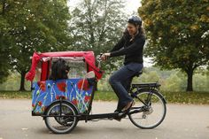 Cargo bike for sale - U.S. Biggest online store for Babboe Cargo bicycles. Free shipping. One FREE accessory. Home Delivery. Best price in the U.S.A.