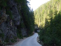Turism Romania, Portal, Country Roads, Memories, Cabin, Memoirs, Souvenirs, Remember This