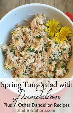 Spring Tuna Salad with Dandelion, Plus 7 Other Dandelion Recipes Lots of great ideas for using dandelion petals, leaves, and roots. Who knew you could do so much with dandelions? Raw Food Recipes, Healthy Dinner Recipes, Salad Recipes, Diet Recipes, Cooking Recipes, Dandelion Recipes, Raw Food Diet, Flower Food, Tuna Salad
