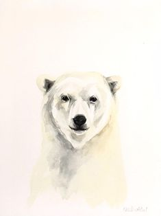 Polar Bear Reflections Digital Picture-Wallpaper or Printing-Email Delivery