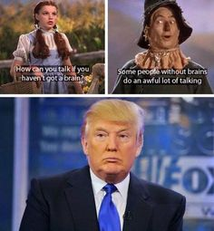 Funny Donald Trump Memes: Trump Talking Without Brains
