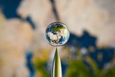 Earth in a droplet.  Photograph of a water droplet with a flat image behind it. Very cool.