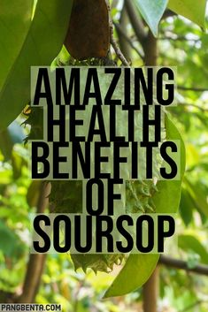 We have listed these amazing health benefits of soursop that you should know. Also called guyabano, this fruit is now very well-known for fighting cancer. Soursop Benefits, Health Benefits, Cancer Fighting Foods, Latin Food, Very Well, Food Preparation, Superfoods, Body Care, Helpful Hints