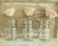ROSE TRIO (sepia) Pale peach blossoms paired with old mason jars for the farmhouse... shabby cottage chic romantic rose still life photography