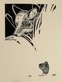 "Henry Bugbee Kane Woodcut Illustration - 1950 - ""Coyote"" by Thomas Shahan 3, via Flickr"
