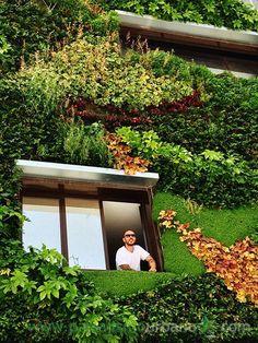 Jardín vertical en Alicante. Paisajismo Urbano en colaboración con el arquitecto Antonio Maciá