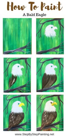 How To Paint A Bald Eagle - Step By Step Painting-Step, Bald, Eagle, paint, painting Canvas Painting Tutorials, Diy Canvas Art, Painting Lessons, Painting & Drawing, Eagle Painting, Feather Painting, Eagle Art, Happy Paintings, Step By Step Painting