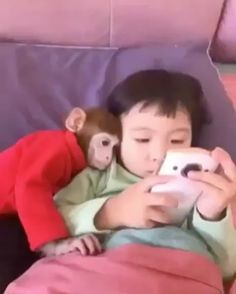 #animal #monkey #instagram #pet #love #funny #humor