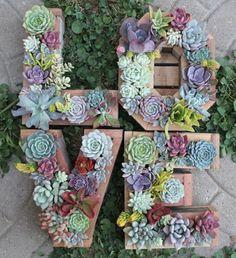 ✿*Cactus*✿*Suculentas*✿ Monogram Letter Vertical Garden by SucculentWonderland Vertical Garden Plants, Vertical Gardens, Vertical Planter, Planter Pots, Cacti And Succulents, Planting Succulents, Succulent Gardening, Gardening Hacks, Gardening Tools