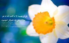 1) Baisser le regard permet de se conformer aux ordres d'Allah, ce qui constitue l'essence même du bonheur de l'homme. Rien n'est plus bénéfique au serviteur, dans cette vie d'ici bas comme dans l'au-delà, que de se conformer aux ordres de son Seigneur....