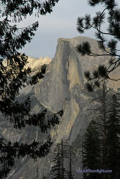 Yosemite  The front of Half Dome.  The hike leads u tom the very tip top.