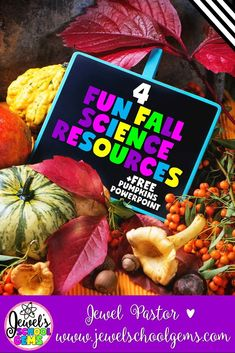 4 FUN FALL SCIENCE RESOURCES FOR PRIMARY by Jewel Pastor | Pumpkins. Apples. Bats. Spiders. What season do you associate with those words? It's fall, of course! Do you need fun yet practical fall science resources? Well, you came to the right place!  In this post, you'll read about four of my fall science resources that I'm pretty sure will help your students learn more while having fun, as well as make your teacher-life a whole lot easier during this time of the year! | fall science… Science Resources, Science Lessons, Teaching Science, Science Activities, Classroom Activities, Student Learning, Life Science, Science Experiments, Teaching Ideas