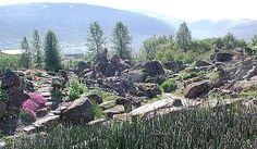 Tromsø arktisk-alpine botaniske hage  (Alpine botanical garden of Tromsø)