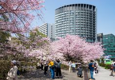 Grand Arc Hanzomon (グランドアーク半蔵門). / Architect : Nikken Sekkei (設計:日建設計).