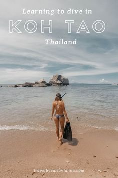 Koh Tao, Thailand is one of the most affordable places in the world to get your scuba diving license. Here is my comprehensive guide to how to get it done. In this post I break down my experience by day, explaining everything from how to find the right sc Thailand Destinations, Thailand Travel Guide, Top Travel Destinations, Asia Travel, Travel Abroad, Scuba Diving License, 10 Days In Thailand, Scuba Diving Certification, Diving School