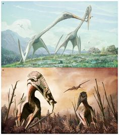 Transylvania Pterosaur Was the Top Predator on Its Prehistoric Island Home.  A single neck bone reveals much about a giant flying reptile that sported a look all its own.