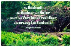 Mein Papa sagt...   Die Hochzeit der Seele mit der Natur macht den Verstand fruchtbar und erzeugt die Fantasie.  Henry David Thoreau    Weisheiten und Zitate TÄGLICH NEU auf www.MeinPapasagt.de