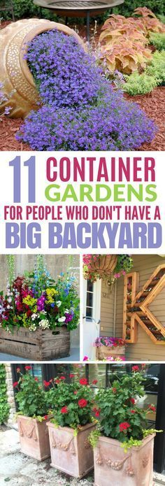 These 11 Container Gardens Are Perfect For Anyone Who has Limited Space In Their Backyard Or Inside Their Homes. : ) #backyard #containergarden #diy #gardening #diys