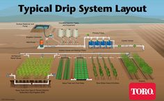 Lovely Netafim Drip Irrigation | The Typical Drip Irrigation System Layout Shows  How Drip Is Used In
