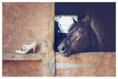 wedding shoes and horses  Mckenzie Brown Photography » Wedding Photography Blog