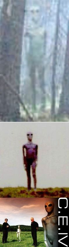 "Claim: ""A group of young hikers insist they have photographed an extraterrestrial creature in a dense forest near Plovdiv, Bulgaria. The group were hiking in Yundola, a large meadow between the mountains of Rila and Rhodoppe, when they came across the mysterious visitor. One of the hikers managed to snap a picture of the creature before it vanished, an grey Alien perhaps?""  (2013) << Clear hoax."