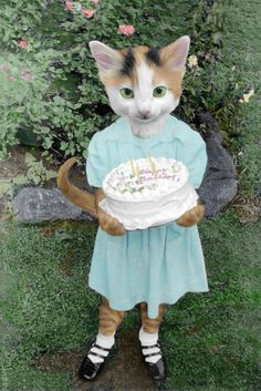 cats with human bodies - Yahoo Image Search Results Funny Cats And Dogs, Funny Animals, Regard Animal, Happy Birthday Art, Animal Society, Cat People, Animal Heads, Here Kitty Kitty, Animal Party
